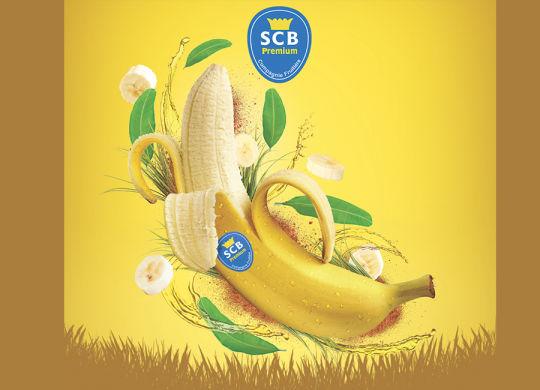 une_article_webzine_food_bananes_scb