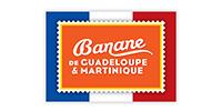 Banane de Guadaloupe et Martinique